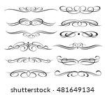 calligraphic elements design...   Shutterstock .eps vector #481649134
