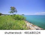 blurred beautiful tropical... | Shutterstock . vector #481680124