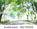 blur park with bokeh light... | Shutterstock . vector #481739269