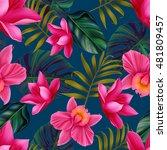 seamless tropical flower  plant ... | Shutterstock . vector #481809457