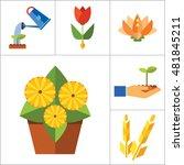 plant icon set | Shutterstock .eps vector #481845211