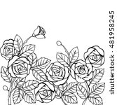Stock vector hand drawn garden of roses for the anti stress coloring page 481958245