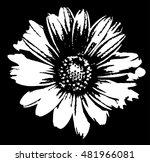flower | Shutterstock .eps vector #481966081