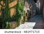 alleys  streets and crannies in ... | Shutterstock . vector #481971715
