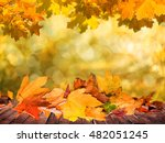 autumn leaves background | Shutterstock . vector #482051245
