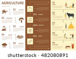 agriculture infographic flat... | Shutterstock .eps vector #482080891