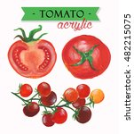 tomato sorts acrylic... | Shutterstock . vector #482215075