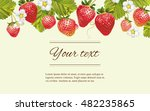 vector strawberry horizontal... | Shutterstock .eps vector #482235865