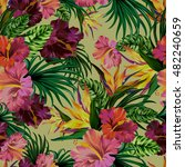 vector seamless floral pattern... | Shutterstock .eps vector #482240659