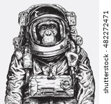 Hand Drawn Monkey Astronaut...