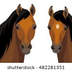 Stock vector vector couple of beautiful arabian horses isolated on white background 482281351