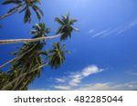 blurred tropical sea blue sky ... | Shutterstock . vector #482285044