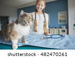 woman and her cat at the vet | Shutterstock . vector #482470261