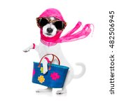 crazy and silly terrier dog... | Shutterstock . vector #482506945
