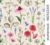 wild flowers illustrations.... | Shutterstock . vector #482522335