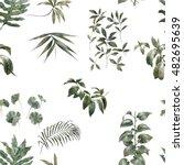 watercolor illustration of leaf ... | Shutterstock . vector #482695639
