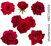 Stock photo collage of red roses isolated on white background 482714314