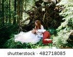 bride strokes groom's head... | Shutterstock . vector #482718085