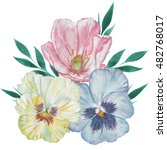 watercolor bunch of pansy and... | Shutterstock . vector #482768017
