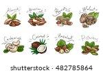 set of colored illustration of... | Shutterstock .eps vector #482785864
