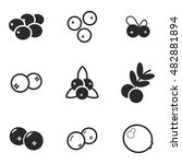 cranberry vector icons. simple... | Shutterstock .eps vector #482881894