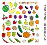 set of simple images fruit and... | Shutterstock . vector #482901511