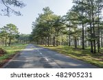 road in pine forest at da lat ... | Shutterstock . vector #482905231