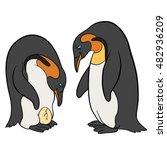 cartoon birds. two cute...   Shutterstock .eps vector #482936209