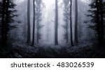 dark forest at twilight   Shutterstock . vector #483026539