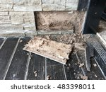 room that termite damage | Shutterstock . vector #483398011