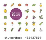 vegetables icons set in flat...   Shutterstock .eps vector #483437899