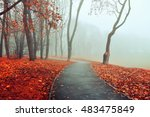 autumn landscape with bare... | Shutterstock . vector #483475849