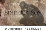 Small photo of Sine qua non. A Latin expression meaning that describes an indispensable condition, element, or factor.Something essential.