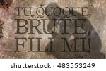 Small photo of Tu quoque, Brute, fili mi. A Latin phrase that means And you, Brutus or You too, Brutus. Caesar s last words.