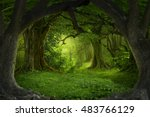deep tropical jungles of... | Shutterstock . vector #483766129