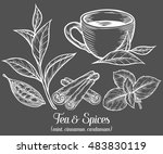green black herbal tea plant ... | Shutterstock .eps vector #483830119