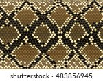 vector seamless texture with a... | Shutterstock .eps vector #483856945