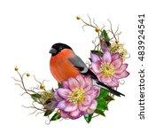the bright red bird bullfinch ... | Shutterstock . vector #483924541