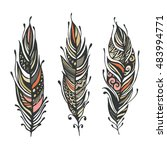 hand drawn feathers. ink vector ... | Shutterstock .eps vector #483994771
