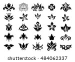 floral vector design elements... | Shutterstock .eps vector #484062337