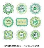 set of green vector guilloche... | Shutterstock .eps vector #484107145