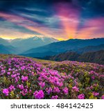 colorful summer landscape with... | Shutterstock . vector #484142425