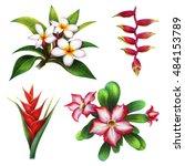Flower Exotic Islands Set ...