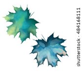 watercolor leaf illustration | Shutterstock . vector #484168111