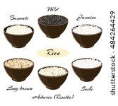 different types of rice basmati ... | Shutterstock .eps vector #484264429