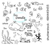 hand drawn set with fish  shell ... | Shutterstock .eps vector #484445455