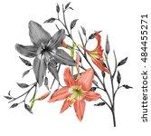 illustration of beautiful... | Shutterstock . vector #484455271