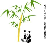 sitting panda with bamboo... | Shutterstock .eps vector #484574365