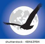 beak,eagle,feathers,flight,fly,glide,moon,silhouette,sky,soar