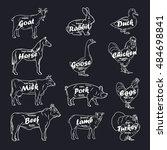 farm animals vector collection. ...   Shutterstock .eps vector #484698841